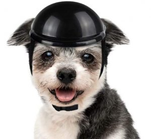 LESYPET Dog Helmet -Padded Pet Motorcycle Helmet Safety Cap