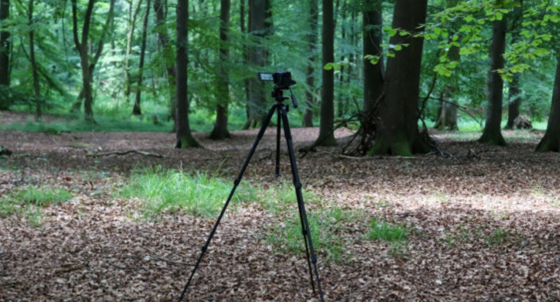 How Do You Carry a Camera When Backpacking?